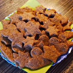 Gingerbread cookies (DF, LC, GLF, GRF, SF)