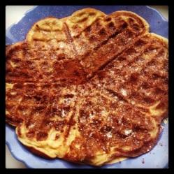 Protein waffle (DF, LC, GLF, GRF, SF)