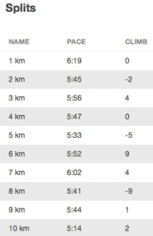 Slowest: 1st km. Fastest: last km.