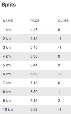 First km was a mistake. I walked for a lot during km-s 4-7. When Kaisa joined me, my speed went up again.
