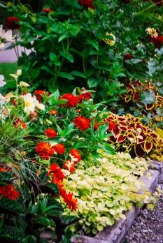 Tartu Botaanikaaed